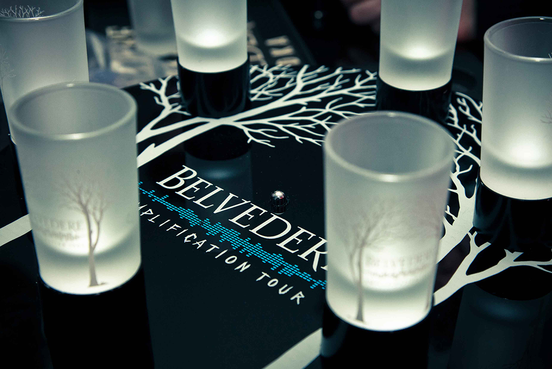 BELVEDERE AMPLIFICATION TOUR